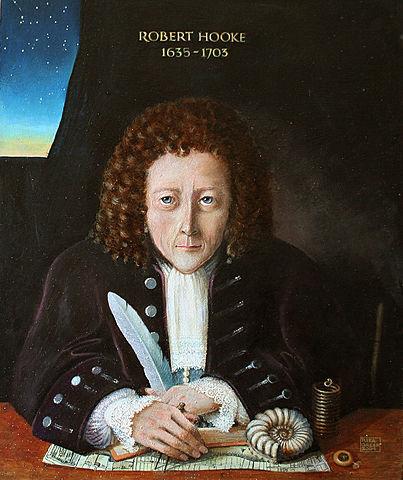 Robert Hook. Establecio las leyes de la mecanica elastica .