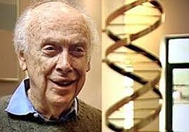 James Watson i Francis Crick descobreixen l'estructura del ADN.