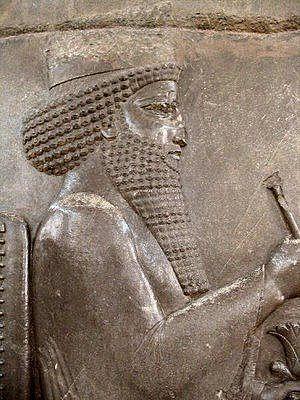 Rei Dario