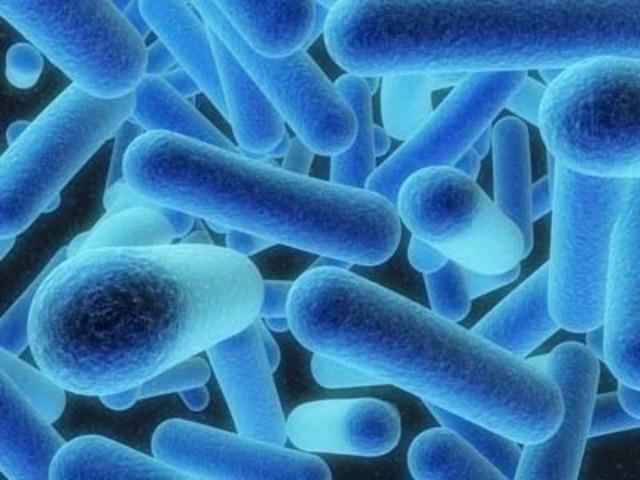 Legionnaire's disease strikes 182, kills 19