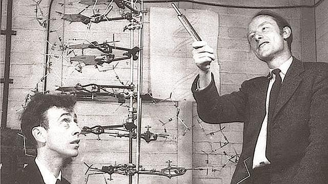 James Watson i Francis Crick descobreixen l'estructura del ADN