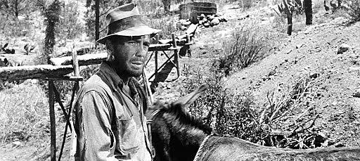 El Tesoro de Sierra Madre: John Houston