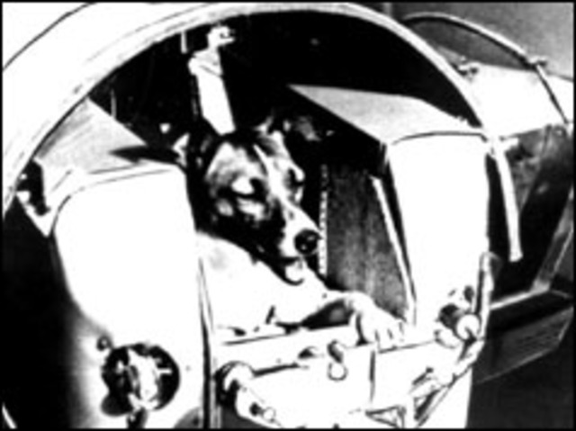 Russians launch dog into space