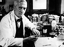 El descobriment de la Penicil·lina