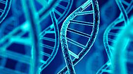 Histoire de la génétique timeline