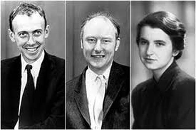 James Watson, Francis Crik et Rosalynd Franklin