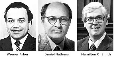 Arber, Nathans et Smith