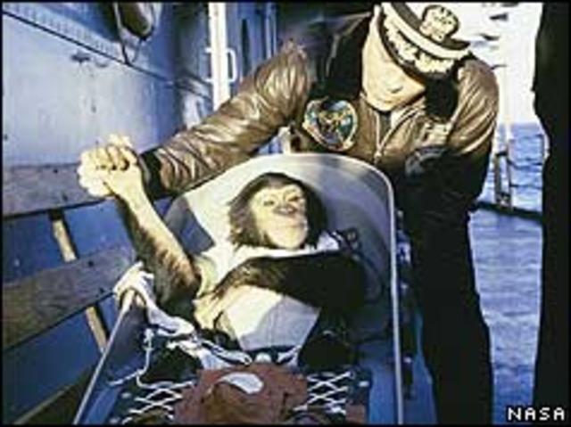 Chimp returns safely after space flight