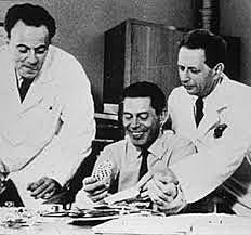Sidney Brenner, François Jacob et Meselson