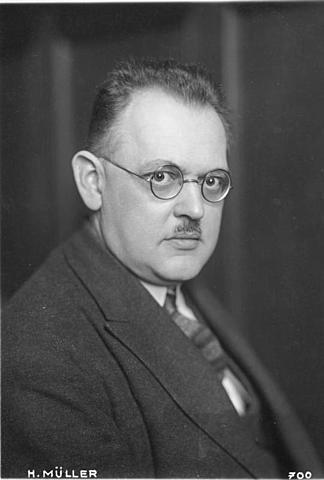 Hermann Muller