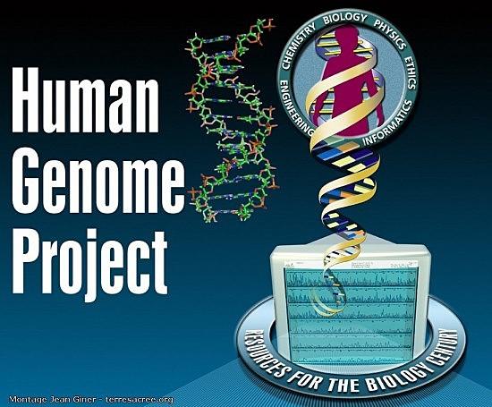 Le Projet génome humain