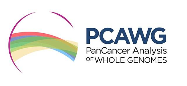 La plus grande étude génomique sur le cancer