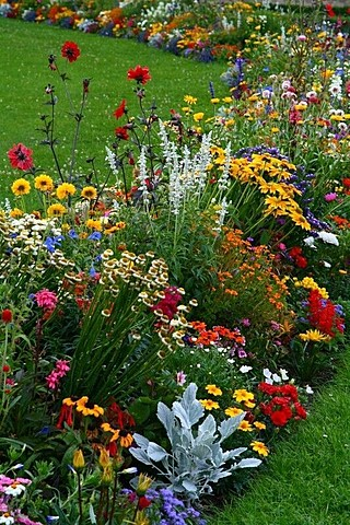 Demain, j'aiderai ma grand-mère dans le jardin.