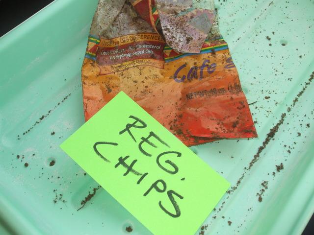 Regular chips observation
