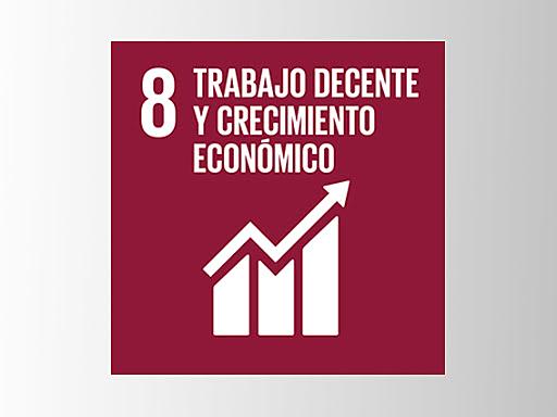 Objetivo 8: Promover el crecimiento económico sostenido, inclusivo y sostenible, el empleo pleno y productivo y el trabajo decente para todos