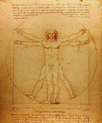 Creació de l'Home de Vitruvi - Leonardo da Vinci