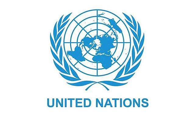 Resolución 44/172 Asamblea General de las Naciones Unidas