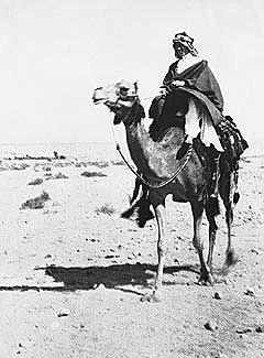 La captura d'Aqaba