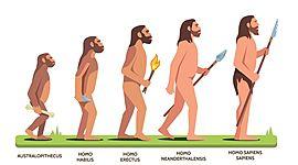 LINEA DE TIEMPO DE LA EVOLUCION DEL HOMBRE timeline