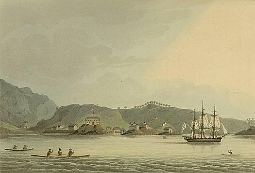 В 1803—1806 годах Беллинсгаузен участвовал в первом кругосветном плавании русских судов на шлюпе «Надежда» под командой Ивана Крузенштерна