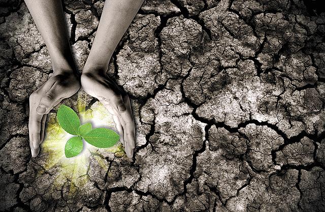 Metas Objetivo 13: Acción por el clima