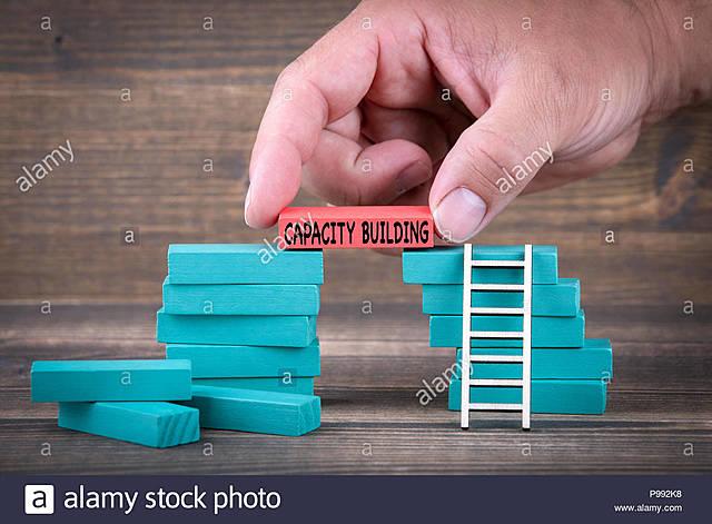 Metas Objetivo 17: Alianzas para lograr los objetivos.- Creación de capacidad