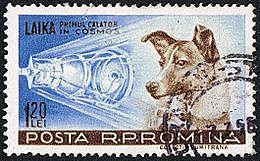 Laika (1954-1957)