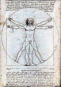 Creació de l'Home de vitruvi de Leonardo da Vinci