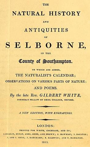 GILBERT WHITE