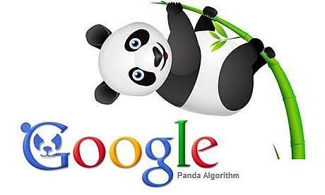 Google lanza Google Panda y Google+.