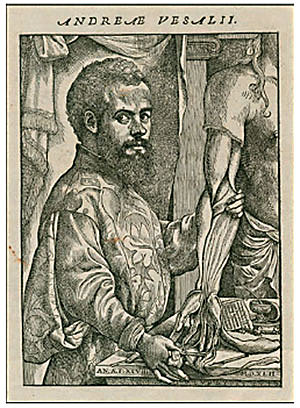 Vesalius descriu l'Anatomia,anota i realitza les primeres disseccions del cos humà