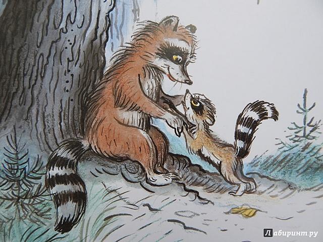 """Иллюстрации к книге Л. Муур """"Крошка енот и тот, кто в сидит в пруду"""""""
