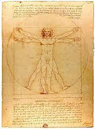 Hombre de Vitruvio (Leonardo da Vinci)