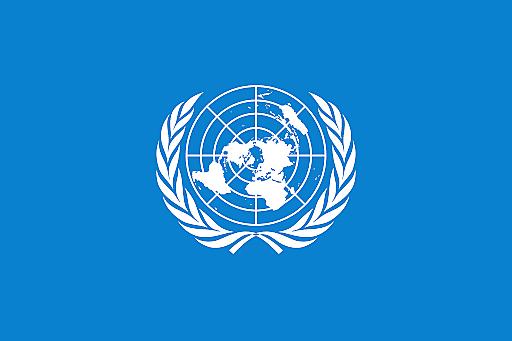 Normas de las Naciones Unidas