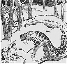 Alien & Sedition Acts (political)