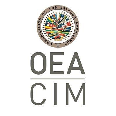 Comisión interamericana de mujeres