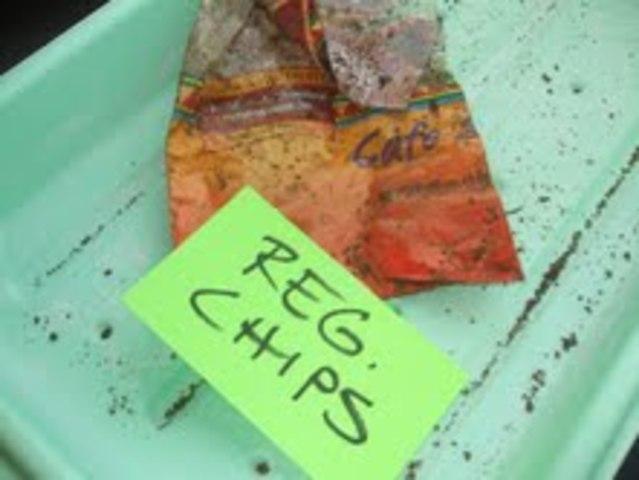 regular chip bag