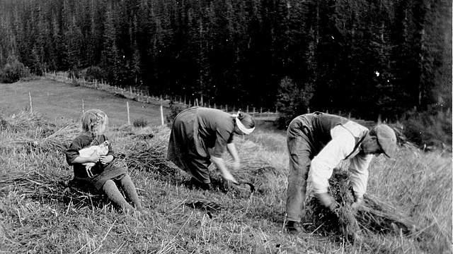 Det førindustrielle Norge