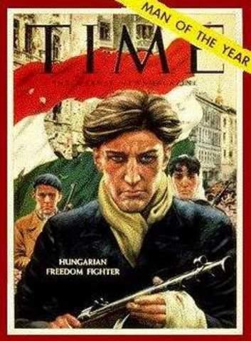 The Hungarians Revolt