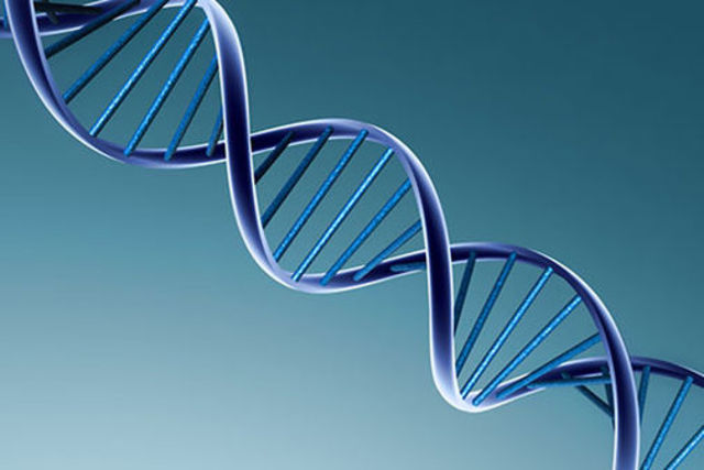 Biologist Discover the Double Helix Structure of DNA