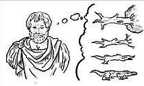 Aristóteles: Generación espontánea o abiogénesis