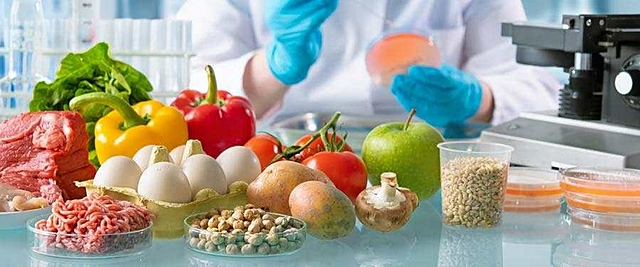 Persistence in Foods and Food Safety
