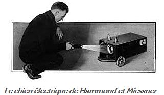 Le chien de Hammond