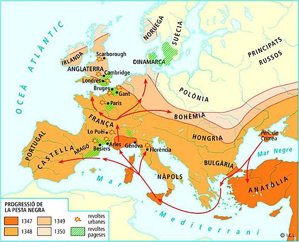 Campanyes dels almogàvers  Mitjans segle XIV: Arribada Pesta Negra a Europa
