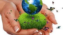 Eco timeline