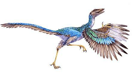 Gli uccelli nell'Era Mesozoica