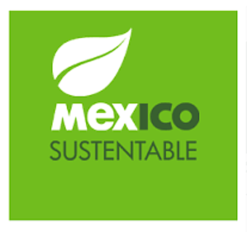 Norma mexicana de responsabilidad social