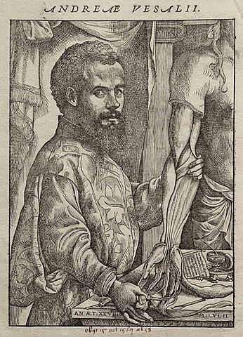 Vesalius descriu l'anatomia, anota i realitza les primeres diseccions del cos humà