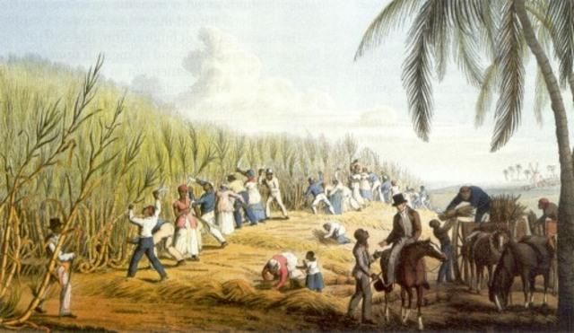 Brazil Abollished Slavery