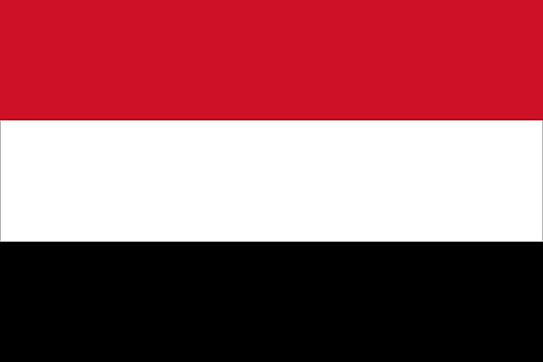 First Case in Yemen